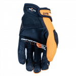 E2 Orange Palm 2022 800X800